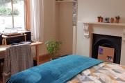 Gordon Terrace, Mutley, Plymouth : Image 16